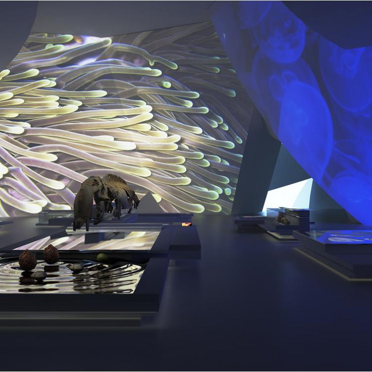 Qatar National Museum, Qatar